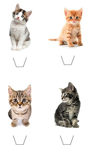 Novelty Cute Kitten Mix 12 Edible Stand up wafer paper cake toppers (5 - 10 BUSINESS DAYS DELIVERY FROM UK)
