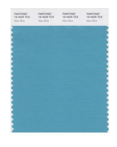 PANTONE SMART 16-4525X Color Swatch Card, Maui - Maui Hyatt