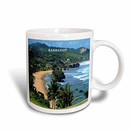 - 3dRose mug_61994_2