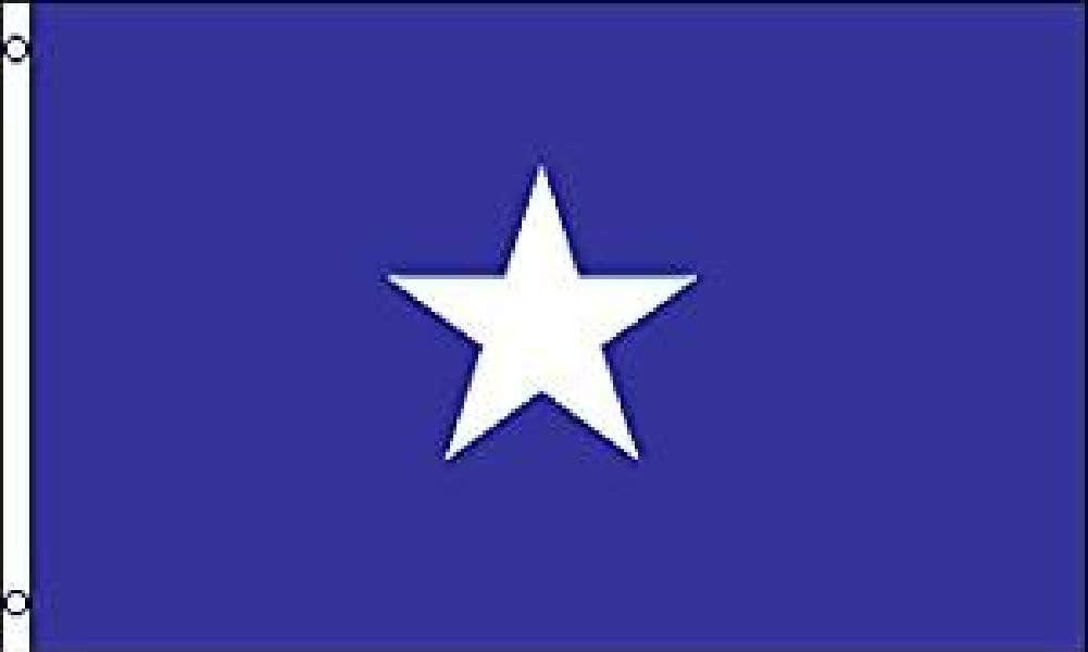 Bonnie Blue Flag 3x5ft Poly by Rebel