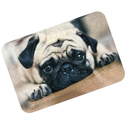 Tapete Capacho Pet para Cães, Alklin Pet