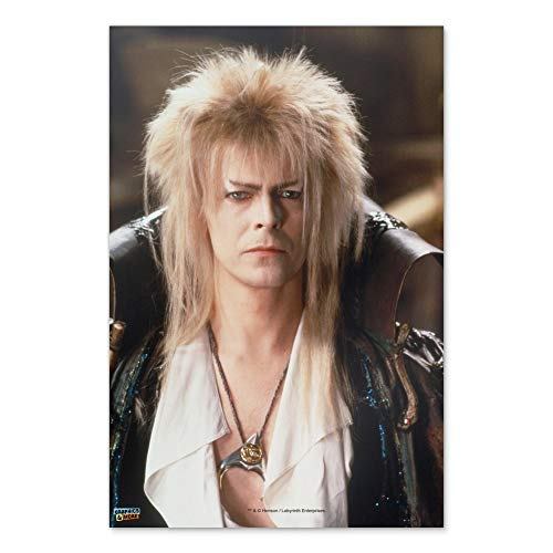 "GRAPHICS & MORE Labyrinth Goblin King David Bowie Portrait Home Business Office Sign - Poster - 24"" x 36"" (61cm x 91cm)"