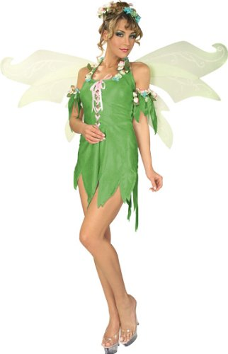 Secret Wishes Women's Enchanted Creature Adult Green Fairy Costume, Multicolor, Medium (Enchanted Wishes Costume)