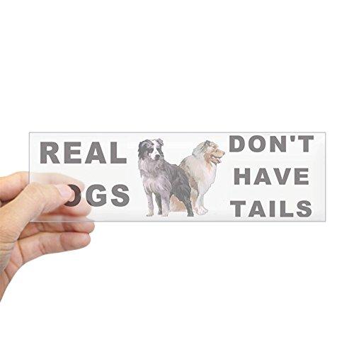 CafePress Australian Shepherd Bumper Sticker 10