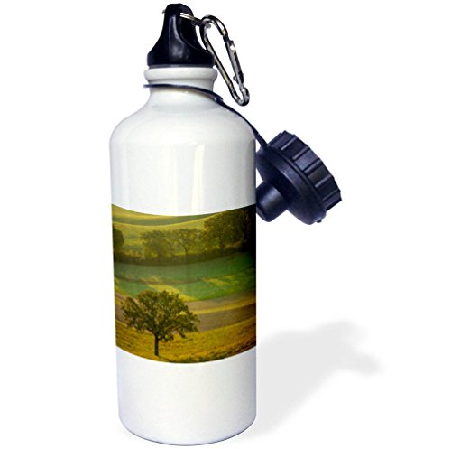 3dRose Danita Delimont - Italy - Hazy sunrise over the countryside, Val dOrcia, Tuscany, Italy - 21 oz Sports Water Bottle (wb_277549_1) by 3dRose