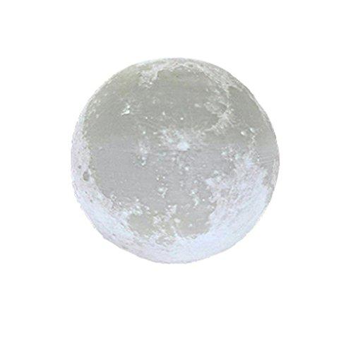 Moonlight Design Garden Lighting - 4