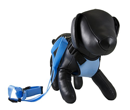 Petcessory PHB-001-BLU-S Travel Harness with Leash, Small, Blue by Petcessory