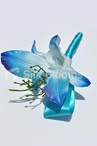 Buy blue dendrobium orchids silk