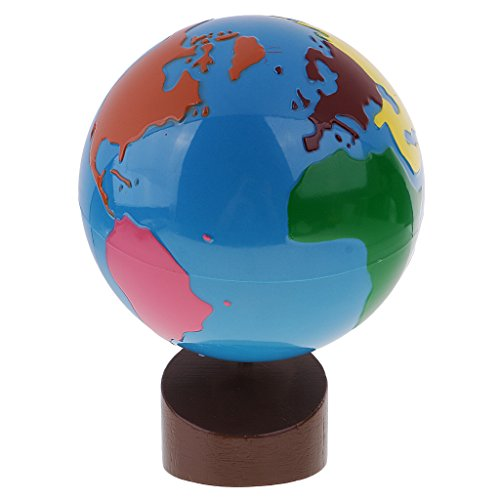 Fityle Montessori Geography Material - Globe Of World Parts Kids