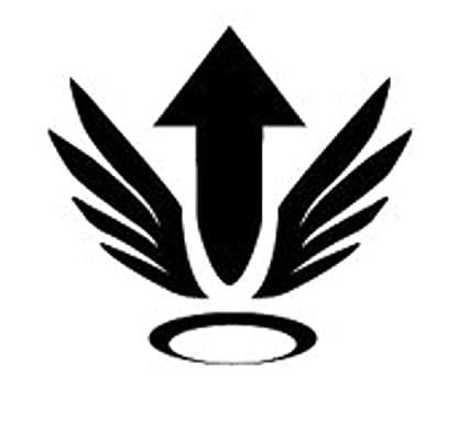 Amazon Overwatch Video Game Mercy Ultimate Icon Vinyl Stickers