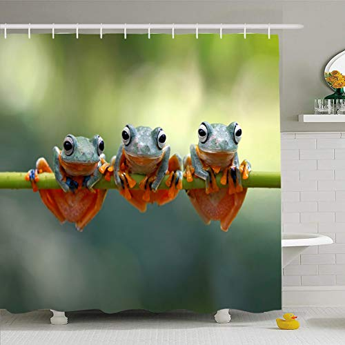Orange Tree Frog - Ahawoso Shower Curtain 72x78 Inches Green Fauna Tree Frog Java Flying Wildlife Closeup Macro Indonesia Jungle Adorable Amphibian Design Waterproof Polyester Fabric Bathroom Curtains Set with Hooks