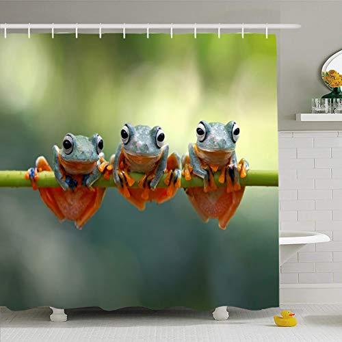 Ahawoso Shower Curtain 72x78 Inches Green Fauna Tree Frog Java Flying Wildlife Closeup Macro Indonesia Jungle Adorable Amphibian Design Waterproof Polyester Fabric Bathroom Curtains Set with Hooks
