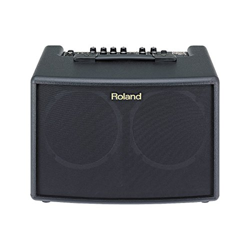 """Roland AC-60 - 30W 2x6.5"""" Stereo Acoustic Amp- Standard"""