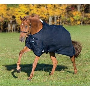 Rider's by Dover Saddlery Supreme Turnout Sheet - Teal/Charcoal, 74 (Sheet Turnout Supreme International)