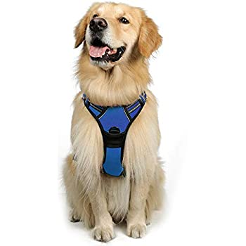 rabbitgoo Dog Harness No-Pull Pet Harness Adjustable Outdoor Pet Vest 3M Reflective Pet Vest Harness for Large Breed (Blue, L)