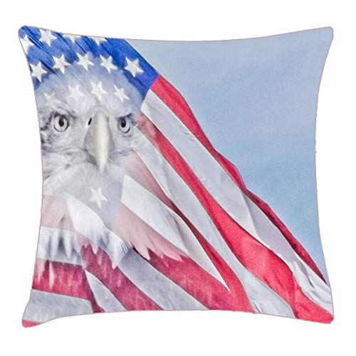 HFYZT American Flag & Bald Eagle Throw Pillow Cover 18x18 Inch Two Sides Design Printed Pillowcase