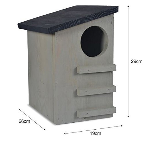 CKB Ltd Squirrel House Nesting Box Made from Pine Wood Outdoor Wildlife Shelter by CKB Ltd