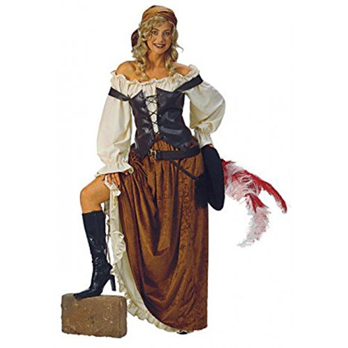 Alexanders Caribbean Pirate Maiden Costume]()