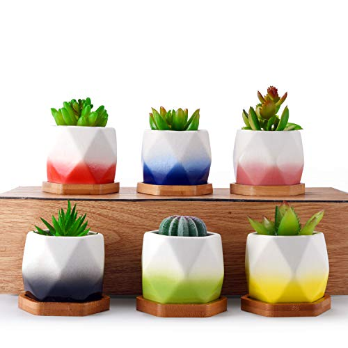 HOMENOTE 12pcs Succulent Planter 2.75inch Ceramic Pot Set Flower Cactus Holder Unique Color Glaze White Container Kit with Bamboo Tray for Home Decor