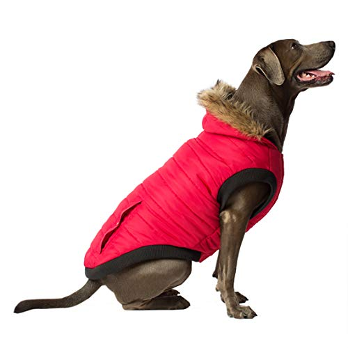 Canada Pooch | North Pole Dog Parka | Water-Resistant Insulated Dog Jacket (26, Red)