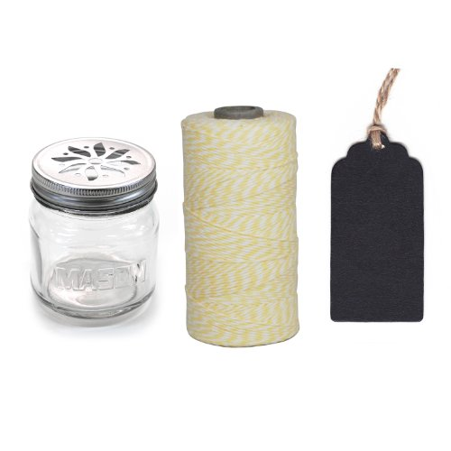 Dress My Cupcake 12-Pack Favor Kit, Includes Vintage Glass Mason Jar Sippers and Twine/Chalkboard Gift Tag, Ivory Light Yellow