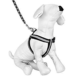 CueCue Pet Reflective Braided Choke Free Harness with Leash, Small, Black/Grey Click on image for further info.