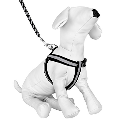 Buy Cue Cue Pet Reflective Braided Choke Free Harness With Leash
