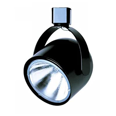 Cal Lighting HT-196 1 Light Adjustable Track Head for HT Series Track Systems,