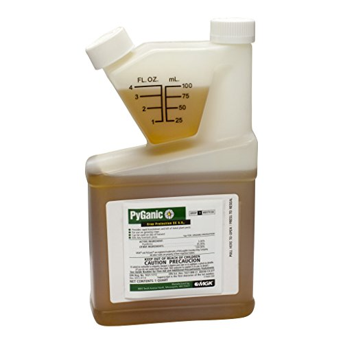 Insecticide Organic Pyganic 5% Pyrethrin 1 Quart Size by David's Garden Seeds by MGK
