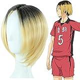 Salemor Anime Haikyuu!! Kozume Kenma Cosplay Wig