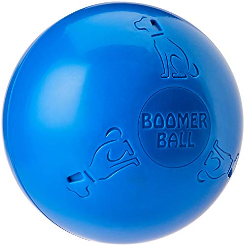 The Company of Animals - Boomer Ball - Durable and Indestructible Dog Toy - Large