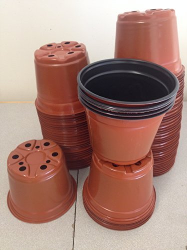 6 Inch Pots (Qty.50) Azalea Flower Pots Garden Pots, Greenhouse Supplies by Landmark Plastics
