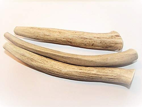 Antler Dog Treats - Antler Dog Treats Save Medium 3-Pack 5-7 in. Long, All-Natural Anti Anxiety Deer Antler Chews from Texas
