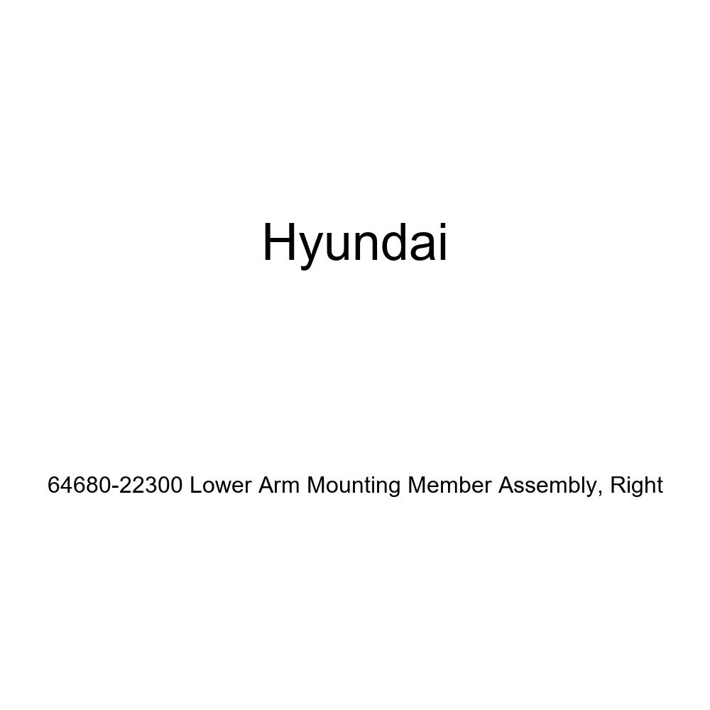 Right Genuine Hyundai 64680-22300 Lower Arm Mounting Member Assembly