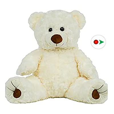 Record Your Own Plush 16 Inch White Twist Bear - Ready 2 Love in a Few Easy Steps: Toys & Games
