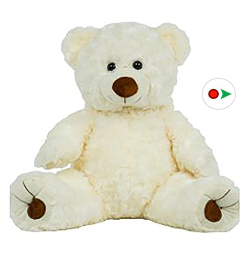 Stuffems Toy Shop Record Your Own Plush 16 inch White Twist Bear - Ready 2 Love in a Few Easy Steps from Bear Factory