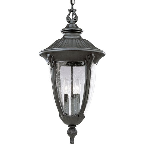 Outdoor Meridian Pendant (Progress Lighting P5520-31 Meridian Cast Aluminum Chain-Hung Lantern, Textured Black)