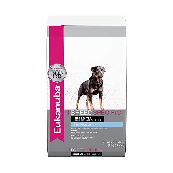 Eukanuba Breed Specific Rottweiler Dry Dog Food, 30 lb 1