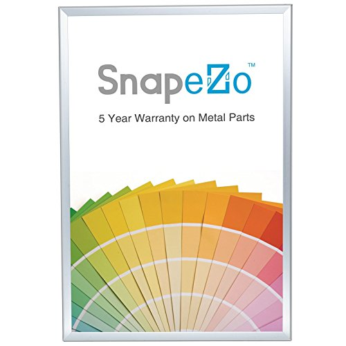 Silver Poster Frame 36x48 Inches, 2'' SnapeZo Profile, Front Loading Snap Display, Wall Mounted, Professional Series by SnapeZo