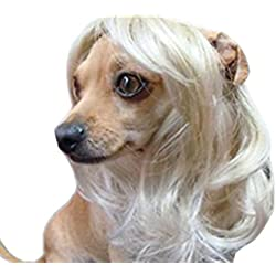 Tanya Pet Supplies -Dog Costumes Blonde Wavy Syethetic Hair Pet Dog Cat Wigs-gift
