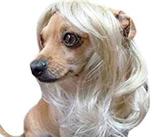 Pet Supplies -Dog Costumes Blonde Wavy Syethetic Hair Pet Dog Cat Wigs-gift