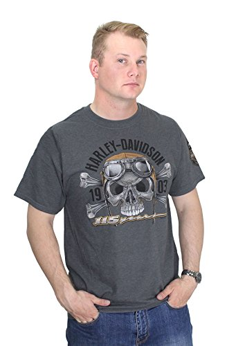 Harley Davidson Crossbones (Barnett Harley-Davidson Harley-Davidson Mens Skull 115th Anniversary Charcoal Short Sleeve T-Shirt (Medium))