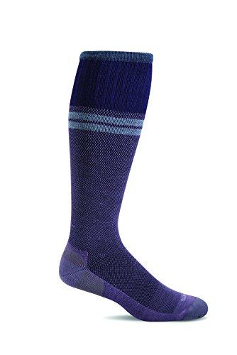 Sockwell Men's Sportster Graduated Compression Socks, Plum, Medium/Large (Plum Medium)