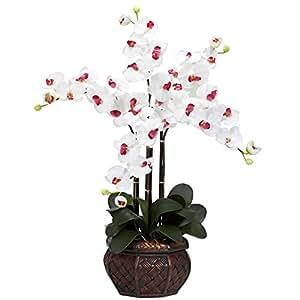 SKB Family Phalaenopsis W/Decorative Vase Silk Flower Arrangement White Floral Natural Home Decor