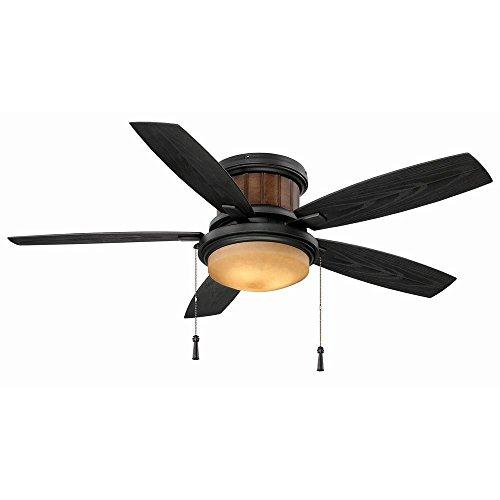 Hampton Bay Roanoke 48 in. Indoor/Outdoor Iron Ceiling Fan -