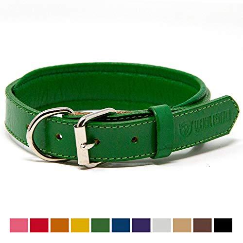 Logical Leather Padded Dog Collar - Best Full Grain Heavy Duty Genuine Leather Collar - Green - Medium