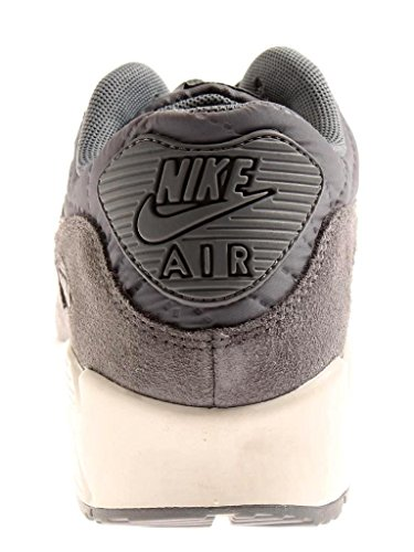 Nike 443817-012, Chaussures de Sport Femme Gris (Cool Grey / Cool Grey Ivory)