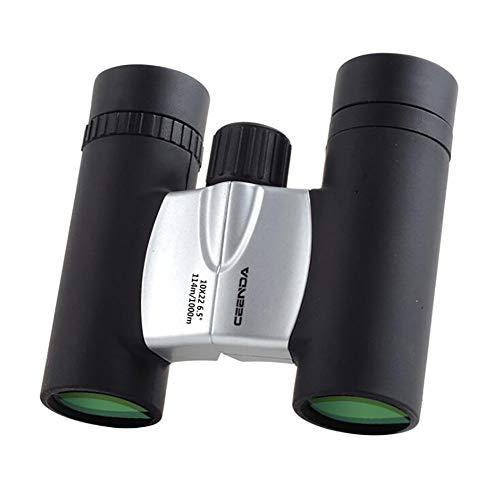 CompraJunta 10x22 HD Waterproof Binocular Wide Angle with Bak-7 Prism, FMC Ultrasharp for Bird Watching,Concerts,Outdoor Activities,Silver