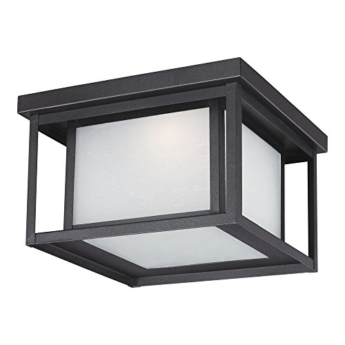 Contemporary Outdoor Ceiling Lighting - 3