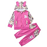 Naladoo 2Pcs Kid Baby Girl Floral Print Rabbit Ear Hooded Top + Pant Set Outfit